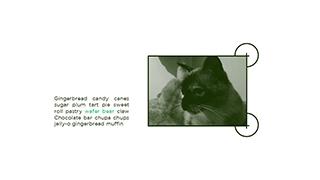 Presentation design services slide design